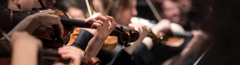 Muzikanten die viool spelen